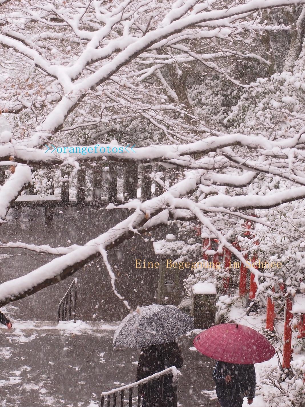 2 Regenschirme im Schneefall.jpg