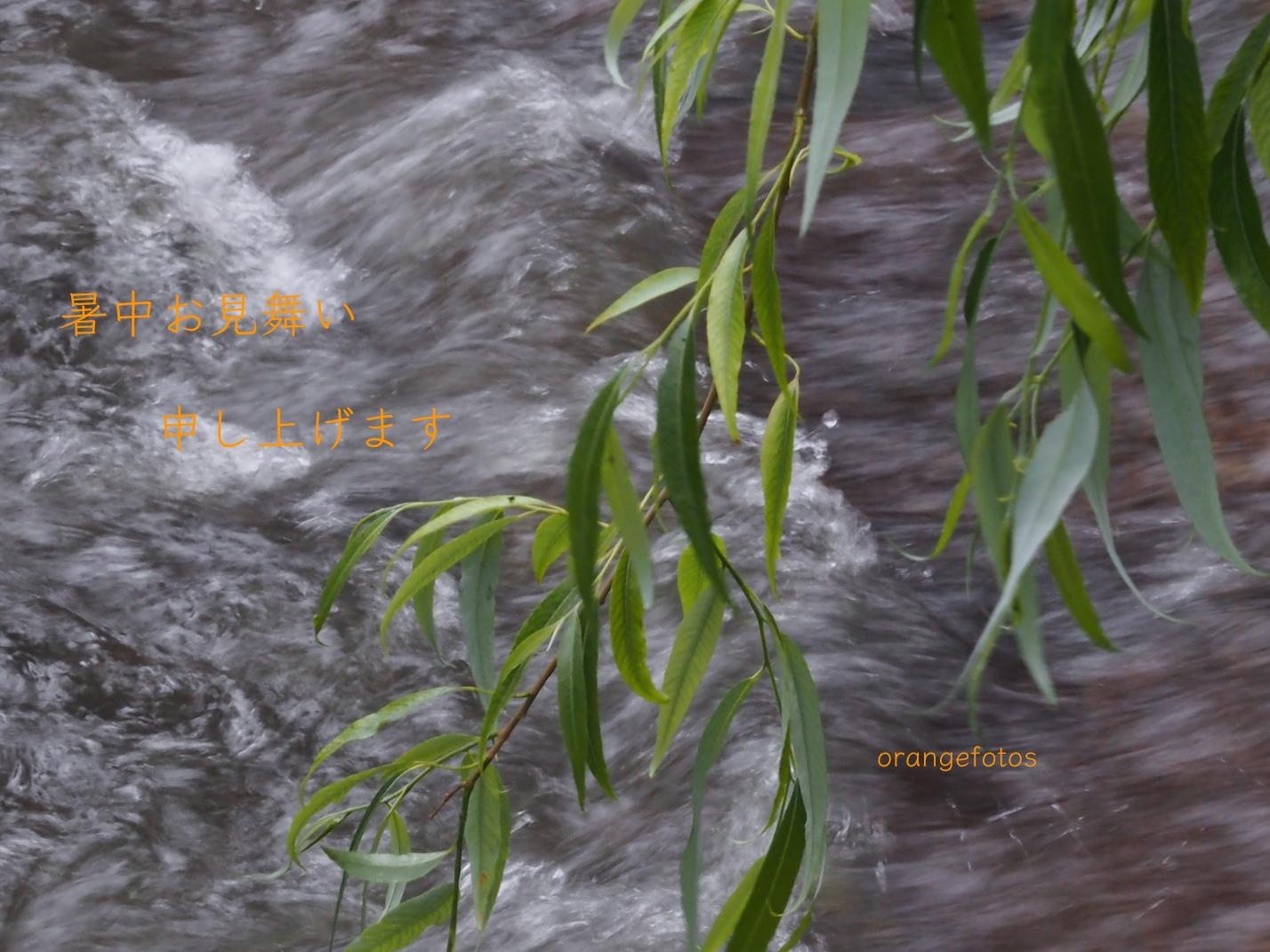 Sommer Fluss.jpg